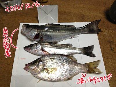 photo_001.jpg